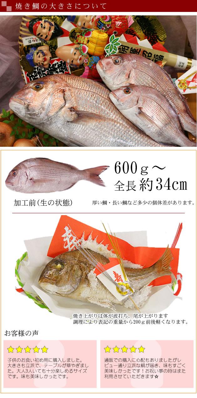 天然焼き鯛の大きさについて
